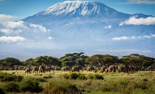 Kilimanjaro Trekking Tanzania